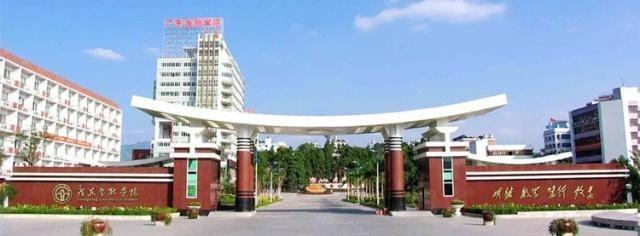 广东金融学院,专升本,成考,成人高考